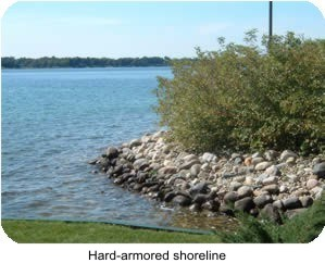 Hard-Armored Shoreline