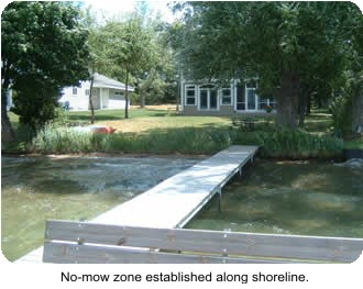 Photo shoreline with dock and no-mow zone